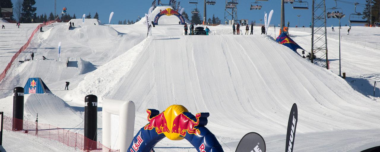 pfo-2015-snowpark